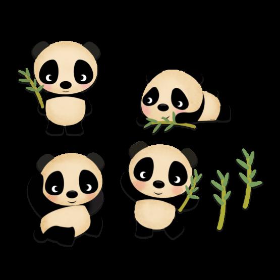 KIT PANDAS